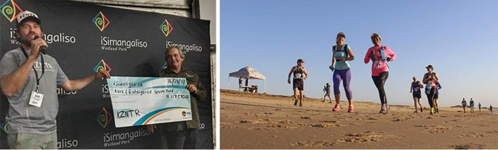 The inaugural iSimangaliso Trail Challenge in July this year brought 127 trail runners into close proximity with the natural beauty of the Lake St Lucia Estuary, Eastern Shores and Maphelane sections of the Park.