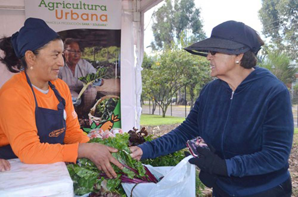Sustainable Agriculture with Gender Inclusion and Participation in Quito, Ecuador, UNFCCC