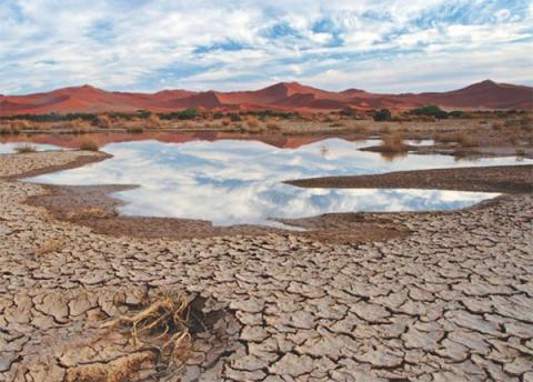 High and Dry: Climate Change, Water, and the Economy