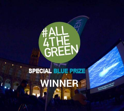 #All4TheGreen Contest Special Blue Prize: The Winner