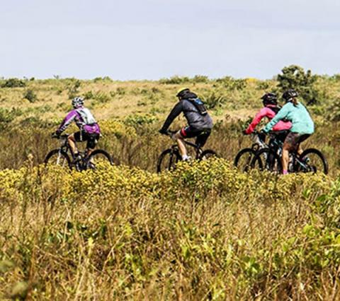iSimangaliso Rare and Endangered Species boosted by Eco-Series events