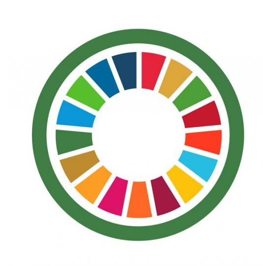 Accelerating Climate Action for all SDGs