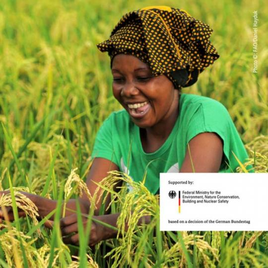 UNDP and FAO join to launch a new online course on climate change and agriculture